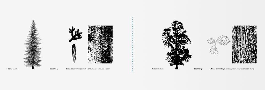 MyCarloElle-coppie-alberi-rosso